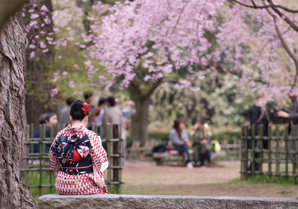 традиции современной Японии